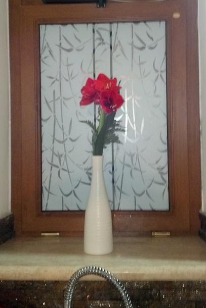 Decorare il vetro di una porta e di una finestra con - Pellicole adesive per vetri esterni ...